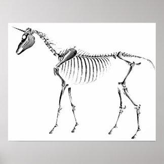 Het Skelet van de eenhoorn Poster