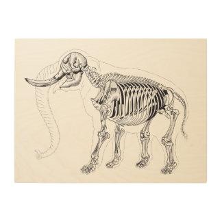 Het skelet van de olifant op hout afdruk op hout