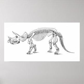 Het Skelet van Triceratops Poster