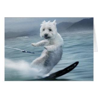 Het Ski?en Westie van het water! Kaart
