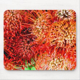 ~ Het slaan van Banksia ~ Muismatten