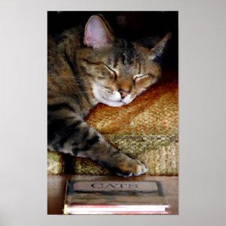 Het slaperige Schilderen van het Boek van de Kat Poster
