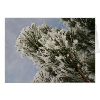 Het sneeuw Wenskaart van de Pijnboom