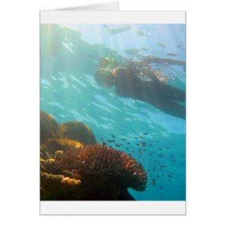 Het snorkelen over een onderwaterertsader wenskaart