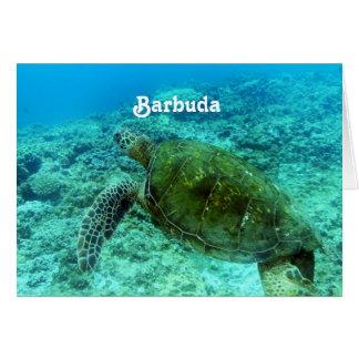 Het Snorkelen van Barbuda Wenskaart