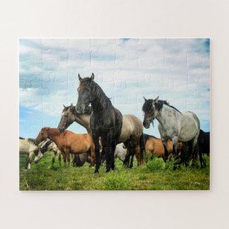 Het Spaanse Raadsel van Mustangen Legpuzzel
