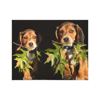 Het speelse Puppy van de Broers van de Brak Canvas Print