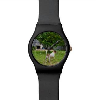 Het Spelen van de fox-terrier in de Tuin, Horloge