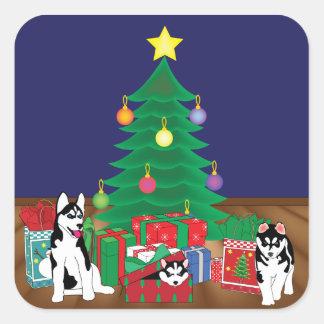 Het Spelen van Huskies onderaan de Kaart van de Vierkante Sticker