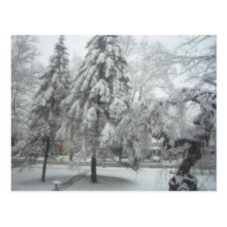 Het Sprookjesland van de winter Briefkaart