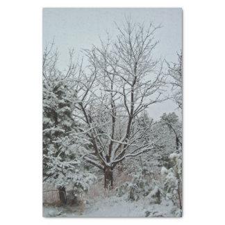 Het Sprookjesland van de winter Tissuepapier