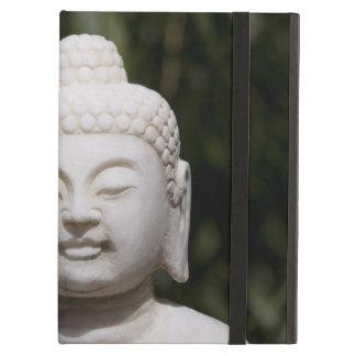 Het Standbeeld van Boedha iPad Air Hoesje