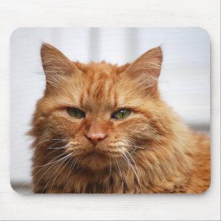 Het Stootkussen van de Muis van de Kat van de Muismatten