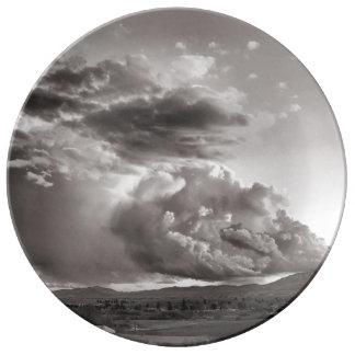 Het Storm van de lente Porseleinen Bord