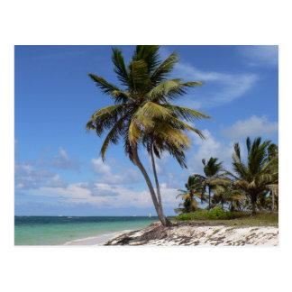 Het strand van de Dominicaanse Republiek Briefkaart