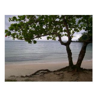 Het Strand van Escondido Briefkaart