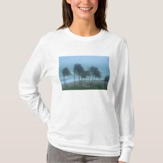 Het Strand van Miami, Florida, orkaanwinden het T Shirt