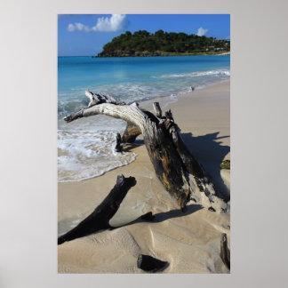 Het strandPoster van Antigua Poster