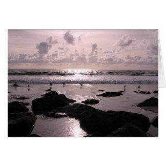 Het strandzonsondergang van San Diego Californië Briefkaarten 0