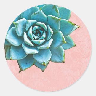 Het succulente Roze Kant van de Waterverf Ronde Sticker