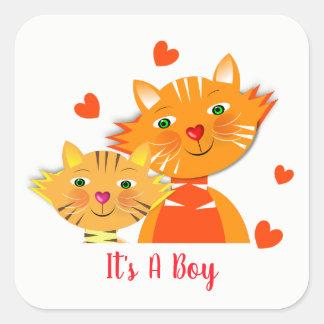 Het Super Leuke Baby shower van de kat en van het Vierkante Sticker