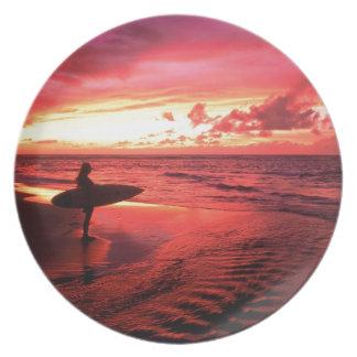 Het surfen bij Zonsondergang Borden
