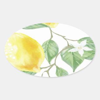 Het textiel Fruit van de Citroen van het Blad van Ovale Sticker