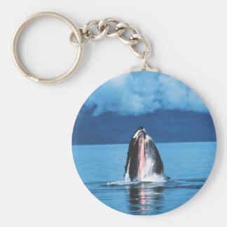 Het Toenemen van de Walvis van de gebochelde Sleutelhanger