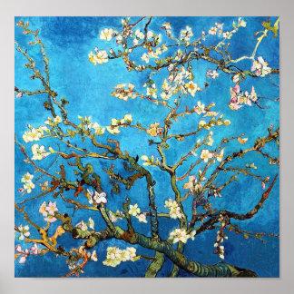 Het tot bloei komen Almond Tree Van Gogh Fine Art. Poster