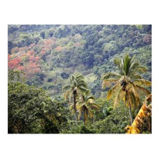 Het uitzicht van de berg, Dominicaanse Republiek Briefkaart