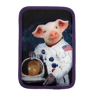 Het varken van de astronaut - ruimteastronaut