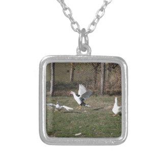 Het vechten van ganzen zilver vergulden ketting