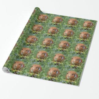 Het verpakken document het gemberproefkonijn cadeaupapier