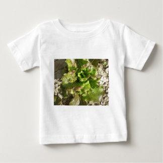 Het verse sla groeien op het gebied. Toscanië, Baby T Shirts