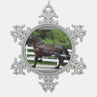 het vervoer van de okkernootheuvel het drijven het tin sneeuwvlok ornament