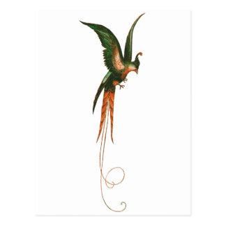 Het Vintage Art. van de paradijsvogel Briefkaart