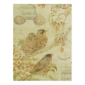 Het vintage Blad van de Muziek van de Eieren van Briefkaart