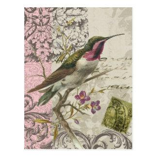 Het vintage briefkaart van de Kolibrie…