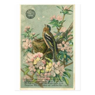 Het vintage Briefkaart van de Vogel van de