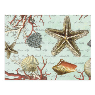 Het vintage briefkaart van Zeeschelpen…