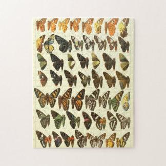 Het vintage Diagram van de Species van de Vlinder Legpuzzel