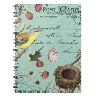 Het vintage Franse notitieboekje van Vogels Ringband Notitieboeken