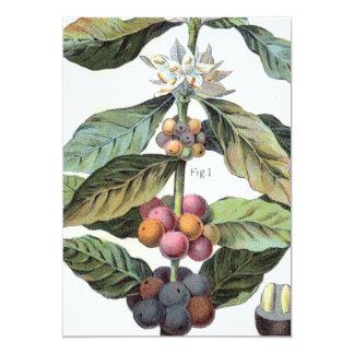 Het vintage Kunstwerk van de boon van de Koffie 12,7x17,8 Uitnodiging Kaart