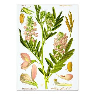 Het vintage Kunstwerk van de Plantkunde 12,7x17,8 Uitnodiging Kaart