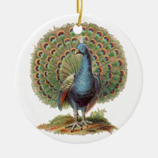 Het vintage ornament van de Pauw…