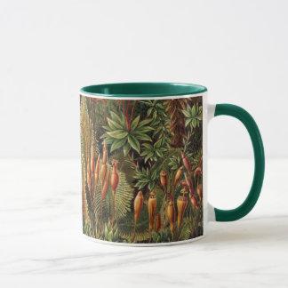 Het vintage Plant van het Mos door Ernst Haeckel, Mok