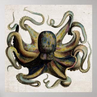 Het vintage Poster van de Druk van de Octopus