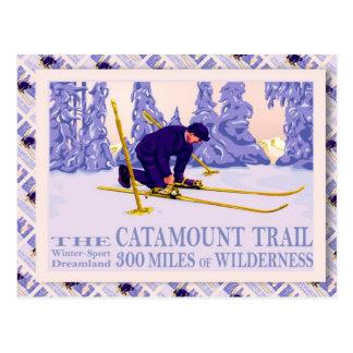 Het vintage poster van de Ski, de Sleep Catamount Briefkaart