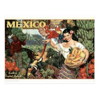 Het vintage Poster van Mexico Briefkaart