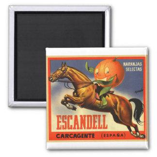 Het vintage Retro Etiket van het Fruit van de Magneet